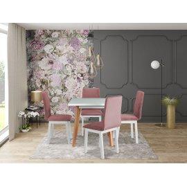 Asztal szék komplett D49