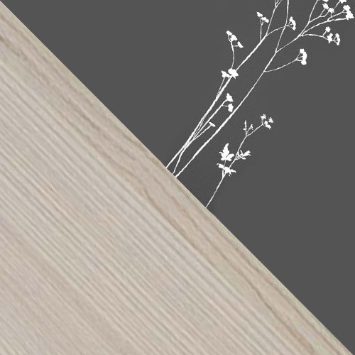 Hamu / Grafit , Motyw - grafit / pitypang